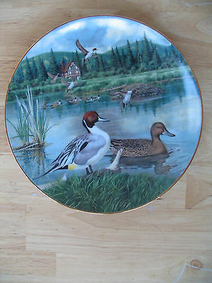 "Bart Jerner Plate "" The Pintail "" Knowles"
