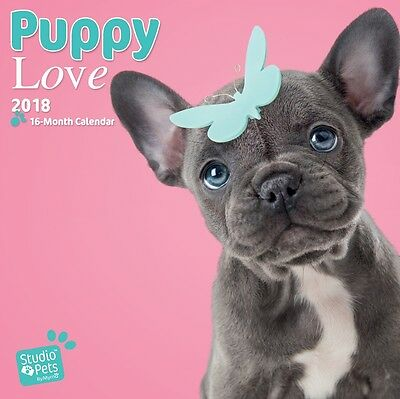 Puppy Love 2018 Square Wall Calendar by Browntrout NEW, Postage Free