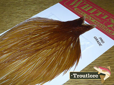 Whiting Farms Dry Fly Cape Medium Ginger Whole New Pro Grade Tying Neck