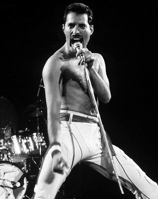 1982 Rock Band QUEEN Freddie Mercury Glossy 8x10 Photo Rock & Roll Print Poster