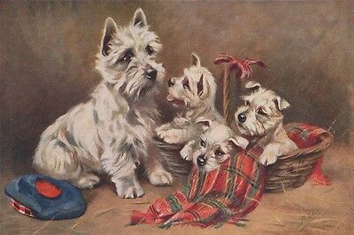West Highland Terrier Dog & Pups TARTAN Mabel Gear New 8 LARGE Blank Note Cards