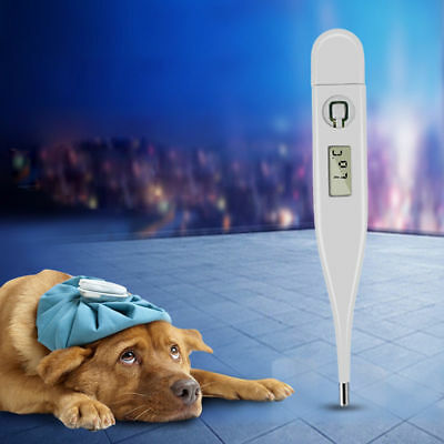 White Pet Animal Electronic Thermometer For Pig Dog Horse Cold Fever Veterinary
