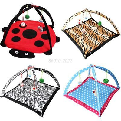 Pet Cat Doggy Play Tent Bed Activity Toys Kitten Puppy Exercise Pad Cushion AU