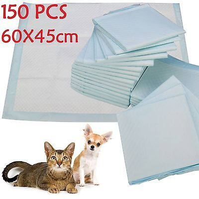 100 Large Puppy Training Train Pads Toilet Pee Wee Mats Dog Cat 60X45 Cm Py