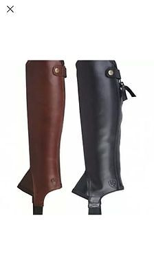 Ariat Concord Chaps Leather Riding Chaps/ Gaiters - smooth black