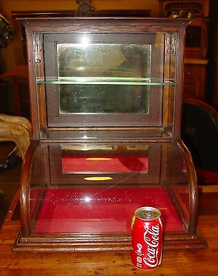 Small quartered oak curved glass tower display case cabinet----15201