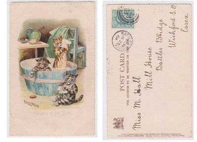 Early Postcard,Animals Cats,Artist Signed Louis Wain,Knights Of The Bath,1904