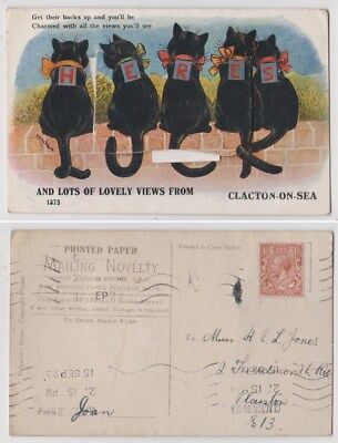 Early Postcard,Animals Cats,Artist Signed Louis Wain, Views From Clacton On Sea,