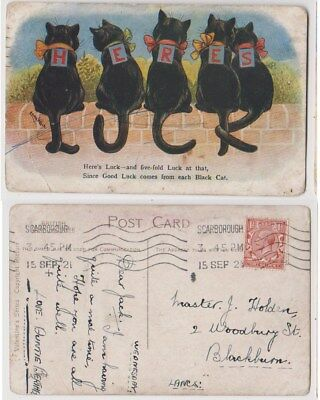 Early Postcard,Animals Cats,Artist Signed Louis Wain, Here`s Luck From Each Cat