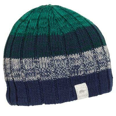 90360efee6559 Turtle Fur Get A Jobe Boy s Fleece Lined Relaxed Fit Striped Knit Beanie
