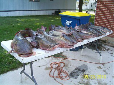 Iowa Guided Catfishing Trip-Fall Fishing - 2 People-2 Days -$250-Big Catfish