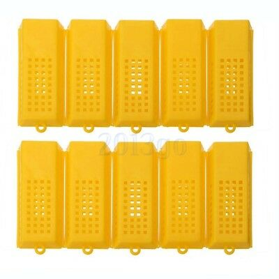 10Pcs Professional Queen Bee Butler Cage Catcher Trap Case Outil d'apiculture HG