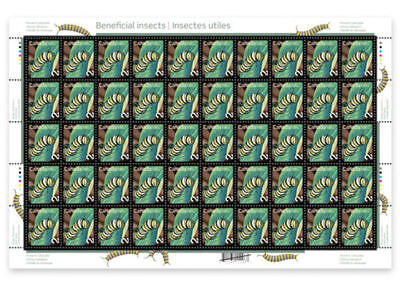 Canada -Full pane of 50 -Beneficial Insects,  Monarch Caterpillar SC #2328 -MNH
