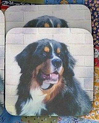 BERNESE MOUNTAIN DOG Rubber Backed Coasters #0767