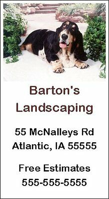 BASSET HOUND TRI-SORT 100 Personalized Business Cards #0550