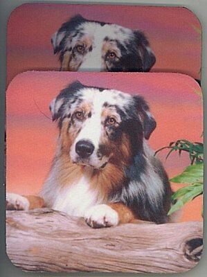 AUSTRALIAN SHEPHERD Rubber Backed Coasters #0641