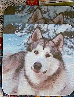 ALASKAN MALAMUTE Rubber Backed Coasters #0950
