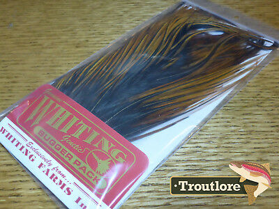 Whiting Farms Furnace Woolly Bugger Pack Saddle Hackle - New Fly Tying Feathers