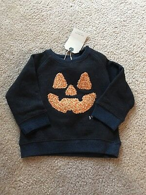 Zara Baby Boy Collection Pumpkin Navy Blue Sweatshirt Sz 6/9 Months NWT