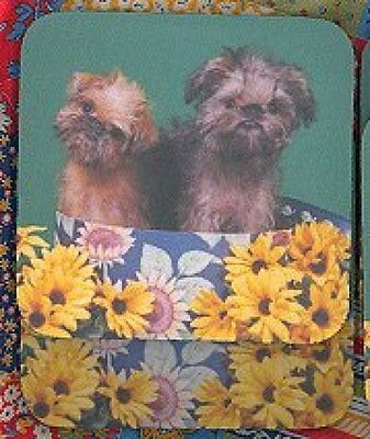 BRUSSELS GRIFFON Rubber Backed Coasters #0961