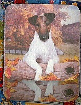 FOX TERRIER SMOOTH Rubber Backed Coasters #0980