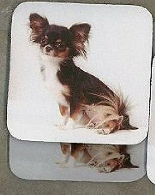 LONG HAIR CHIHUAHUA TRI-SORT Rubber Backed Coasters #0556