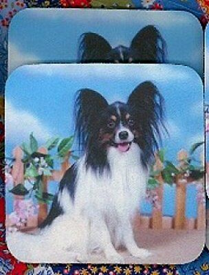 PAPILLON Rubber Backed Coasters #0945