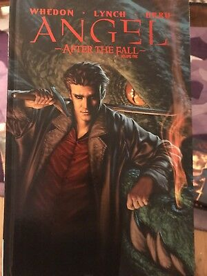 Angel After The Fall volume 1 hardcover graphic novel