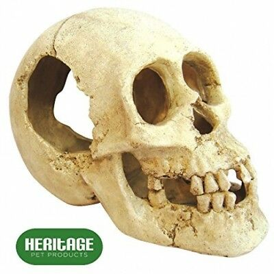 Heritage Bm109 Aquarium Fish Tank Human Skull Ornament Decoration 16Cm