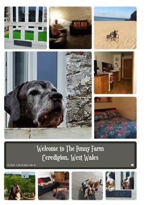 Holiday Cottage, West Wales, Pet Friendly, Nr Beaches between Cardigan/New Quay