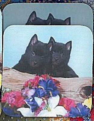 SCHIPPERKE PUPPIES Rubber Backed Coasters #0626