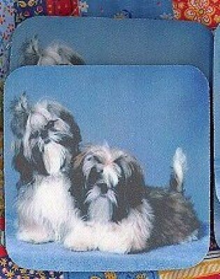 SHIH TZU PUPPIES Rubber Backed Coasters #0802
