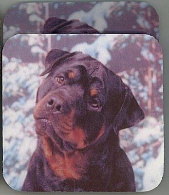 ROTTWEILER Rubber Backed Coasters #0659