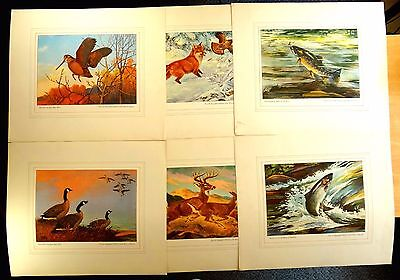 Set of 6 Prints HOUSE OF SEAGRAM 1946 William Shaldach Lynn Bogue Hunt P.Bransom