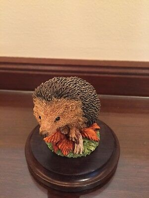 Hedgehog - The Stratford Collection by Country Artists