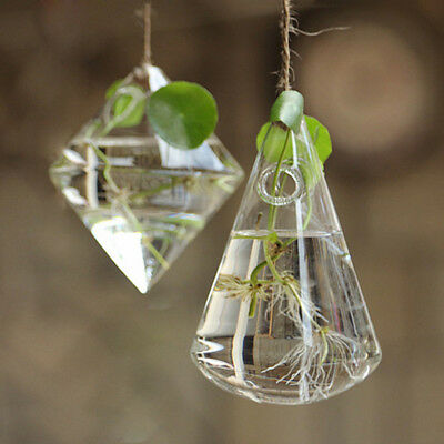 Clear Glass Flower Plant Hanging Vase Ball Terrarium Container Holder Home Decor