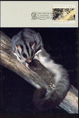 Australia MAXI CARD 1992 possum