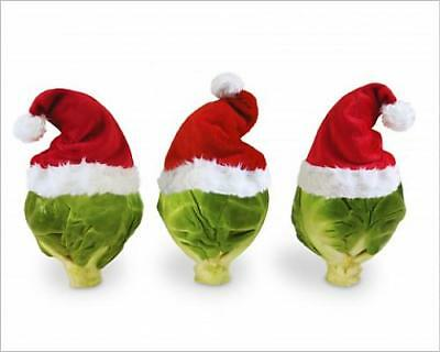 """10""""x8"""" (25x20cm) Print of Brussel Sprouts - in Christmas hats"""