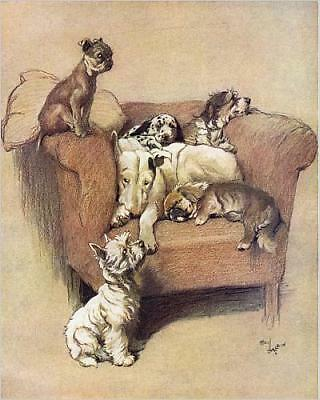 """10""""x8"""" (25x20cm) Print of A House Full by Cecil Aldin"""
