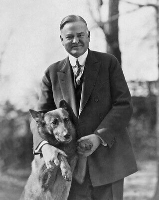 31st US President HERBERT HOOVER w/ Dog Glossy 8x10 Photo Political Print Poster