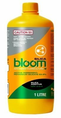 Bloom Yellow Bottles Silica
