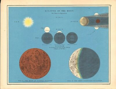 1887 Large Antique Astronomical, Eclipse of the Moon
