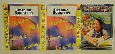 Reading Comprehension & Fluency Book Lot - Grade 2 & 3 - Remedia Publications