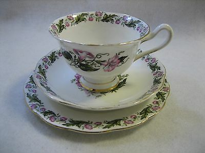Royal Albert 'Cotswold' Teacup Trio