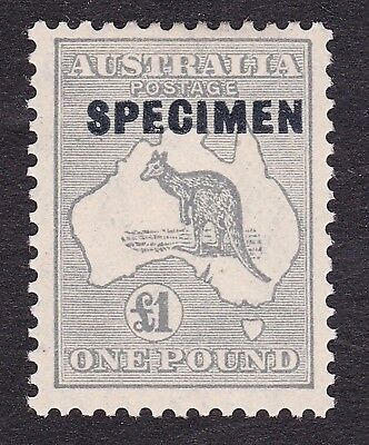 Australia 1931/6  £1 grey Kangaroo- Specimen Stamp-  Mounted Mint.