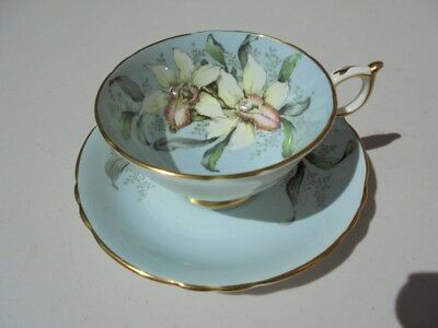 Vintage Paragon England Bone China Cup & Saucer Orchid Blue Background
