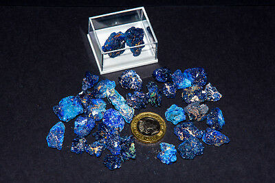 2 x Blue AZURITE Crystal in display box. Natural Mineral specimen from Morocco