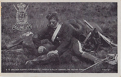 British Army 6th Dragoon Guards Carabinieres Soldier's Fallen Horse 1908 G.D.&D.