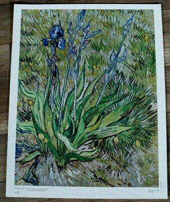 "IRIS Flowers 1988 Vincent Van Gogh National Gallery French 18x23"" Art Print VF"