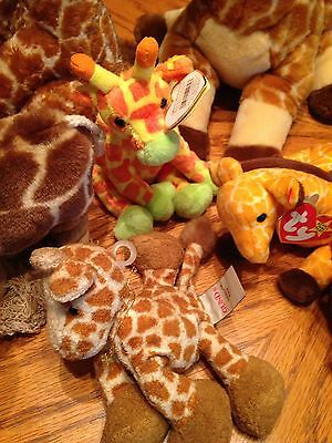 Stuff Giraffe Lot